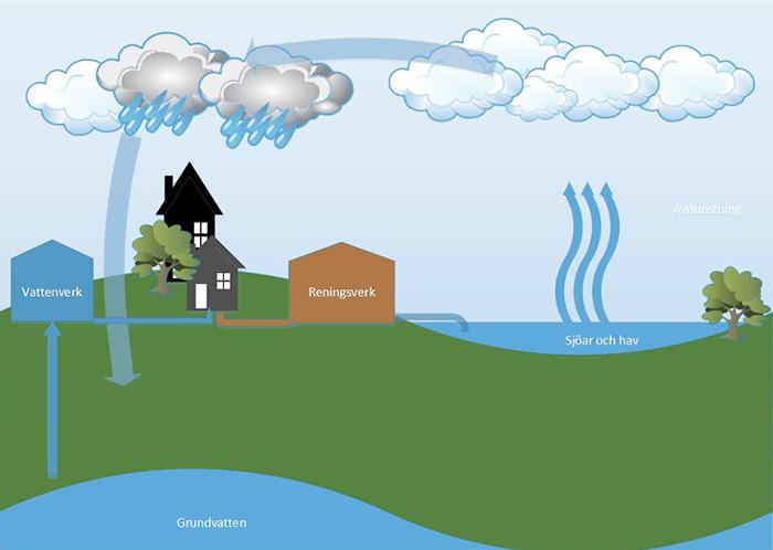 Illustration över vattnets kretslopp